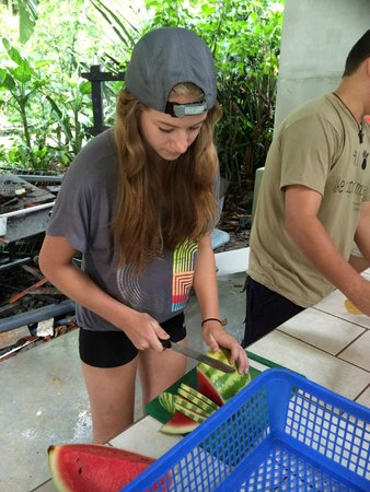 Proyecto Asis: Preparing food for the animals