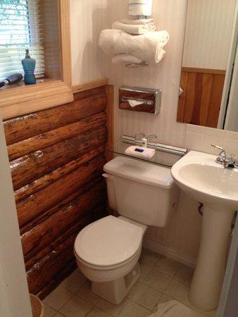 The Nordic Inn : Bathrooom
