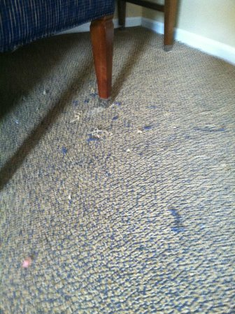 Danford's Hotel & Marina: this is not loose debris, its the carpet falling apart