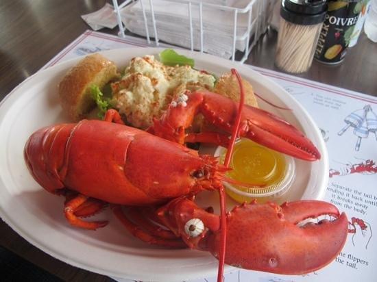Stanley Lobster : 2lb lobster