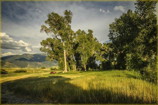 Hansen-Silver Guest Ranch: Our Morning Walk