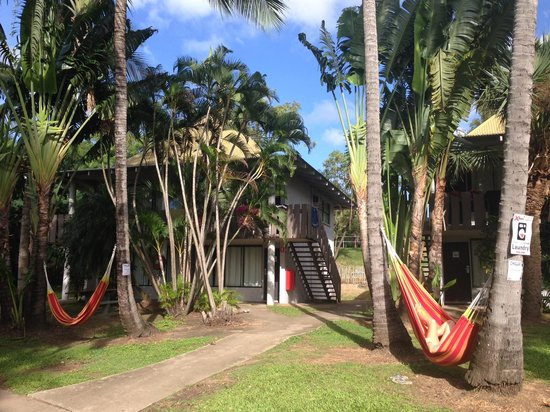 Base Backpackers Airlie Beach: hammocks