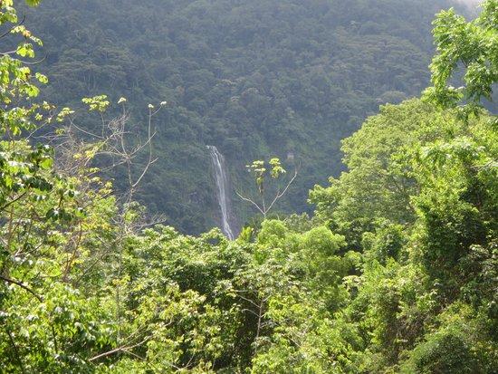 Diamante Verde Tours: Waterfall