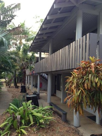 Base Backpackers Airlie Beach : rooms and grounds