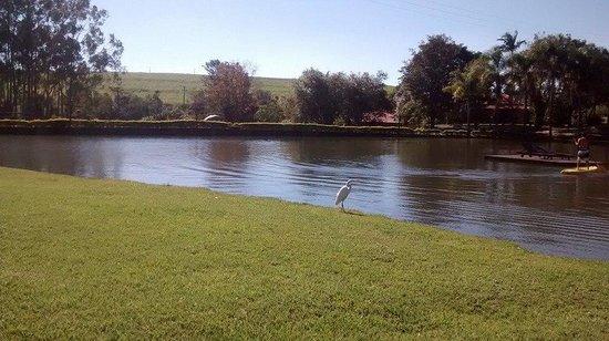 Recanto Alvorada Eco Resort: lago