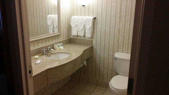Hilton Garden Inn BWI Airport: Standard restroom