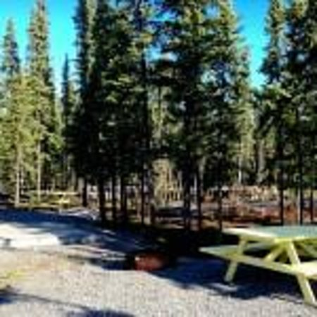 Northern Nights Campground and RV Park: Campsite