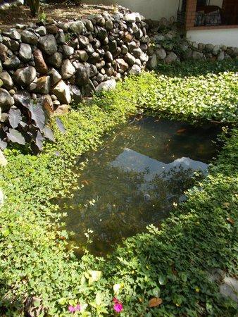 Hostal Garden by Refugio del Rio: Pond outside room