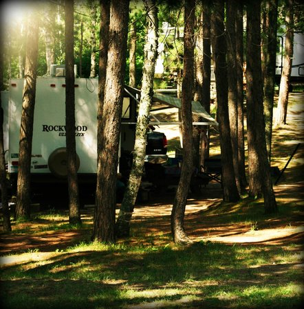 Sleeping Fawn Resort & Campground: Camp site