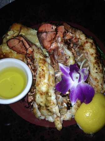 Lazy Lobster of Longboat: my dinner