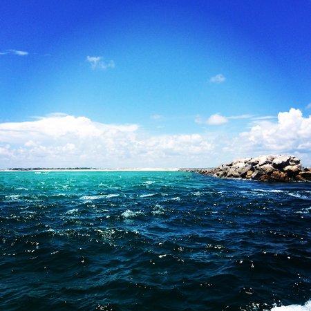 Destin Harbor: Beautiful view!