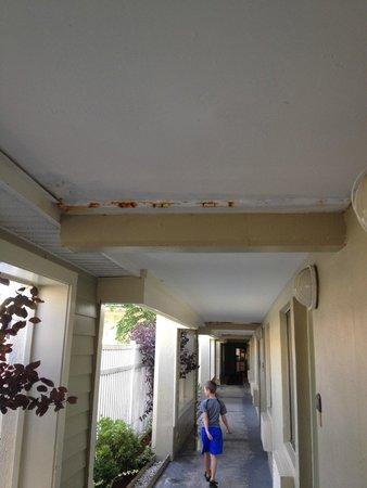 Quality Inn & Suites Lexington: hallway ceiling