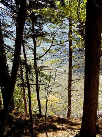 Houghton Falls Nature Preserve: Houghton Point 3