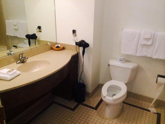 Twin Falls Lodge: Bath