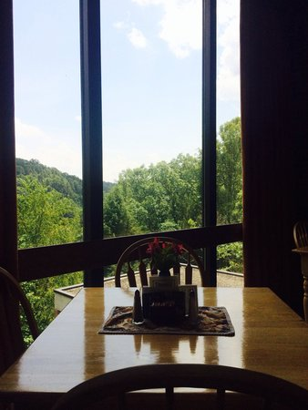 Twin Falls Lodge: Views from restaurant