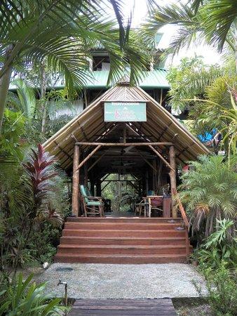 Casa Cayuco: Main Lodge