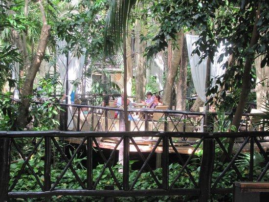 "The Reef Playacar: The ""tea room"""