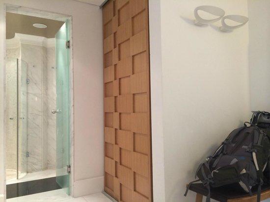 The Excelsior: neat closet door