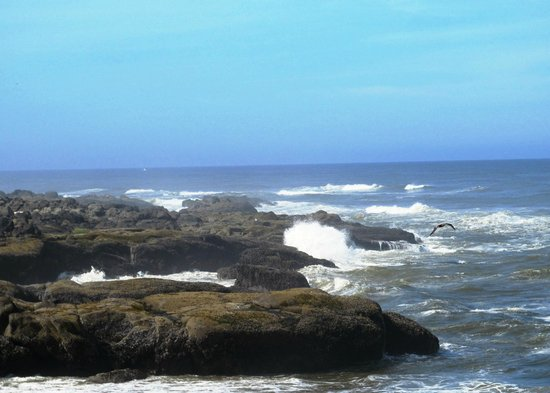Overleaf Lodge & Spa: Being hypnotized by the ocean waves