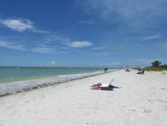 Tarpon Tale Inn: Beach