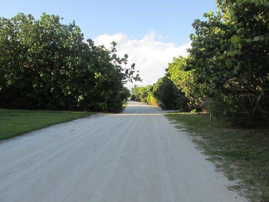 Tarpon Tale Inn: Walk to Beach