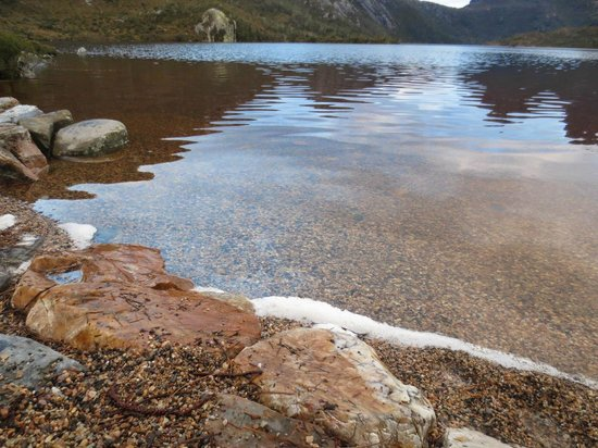 Dove Lake Circuit: Clear and tranquil waters