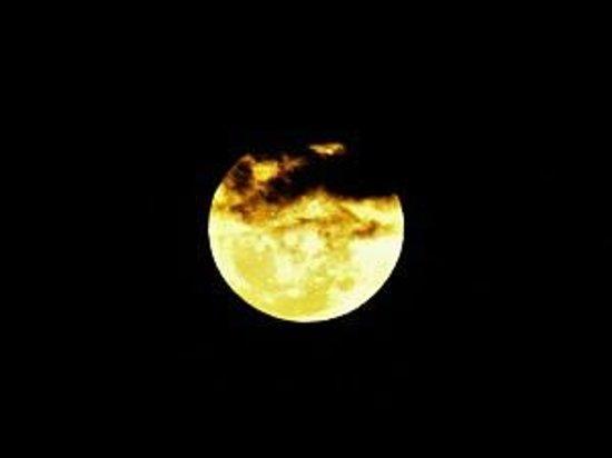 Eungella Mountain Edge Escape: Fuul moon, photo courtesy of Wendy Storer