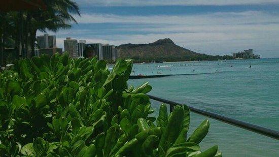 Sheraton Waikiki: 部屋からの眺めです。