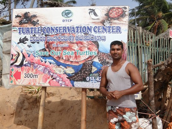 ‪Our Turtle Conservation Project‬