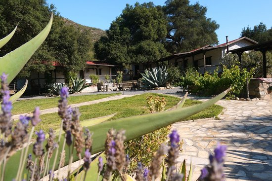 Baja Rancho La Bellota: Day in the ranch