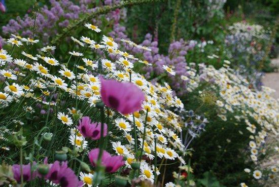 Hidcote Manor Garden: The Long Borders