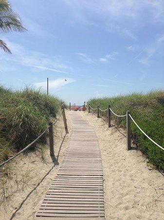 Royal Palm South Beach Miami, A Tribute Portfolio Resort : дорожка к пляжу