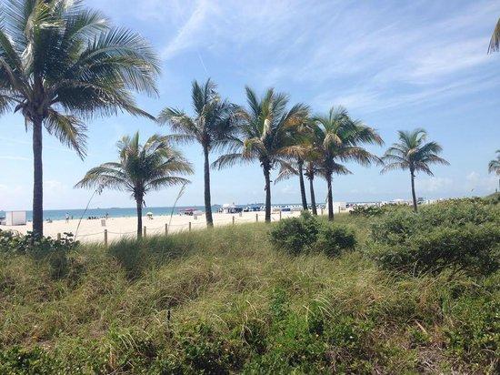 Royal Palm South Beach Miami, A Tribute Portfolio Resort: вид пляж