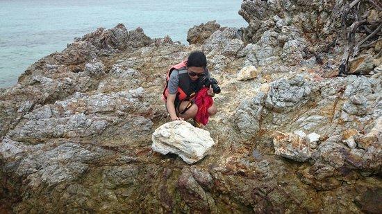 Bulog Island: Amazing