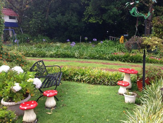 Altura Hotel: Lots of gnomes and mushrooms