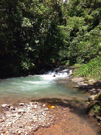 Brisas del Nara: The beautiful swimming hole