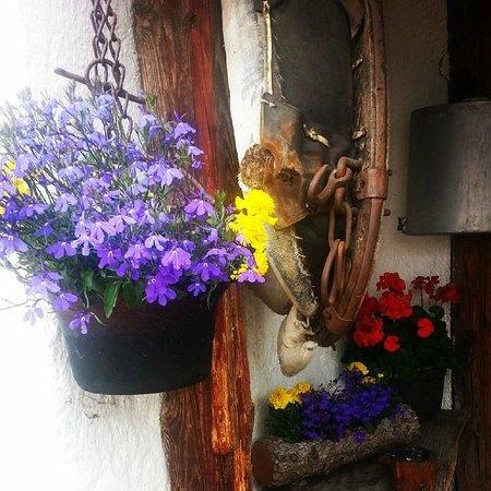 Agriturismo Malga Misurina : Dentro cibo favoloso, fuori ambiente delizioso.