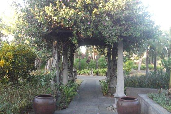 Maradiva Villas Resort and Spa : Near the cilantro rrestaurant  serving breakfast.