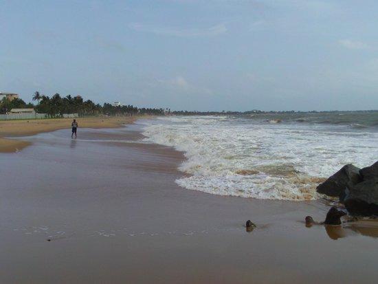 Jetwing Beach : Beach