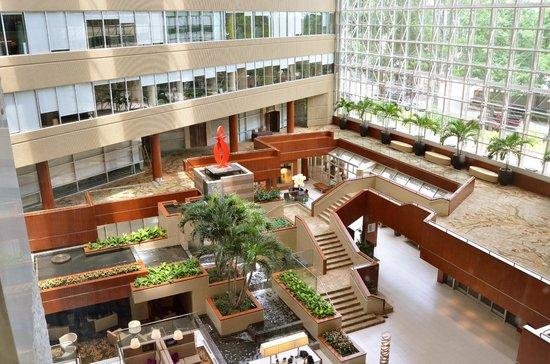 Hyatt Regency Greenville : Hotel Lobby