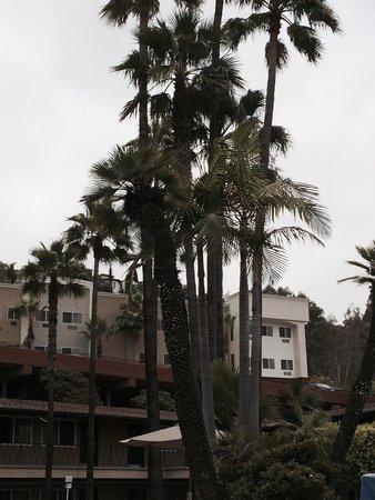Kings Inn San Diego: Beautiful place