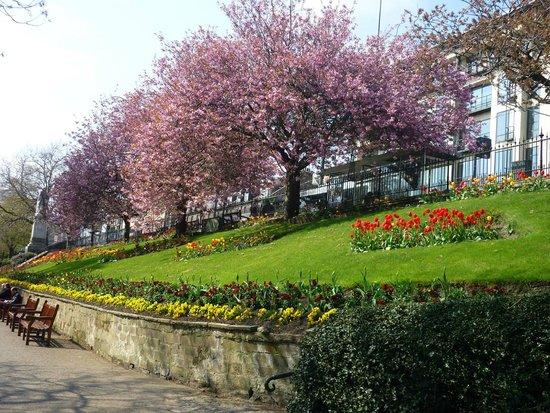 Princes Street Gardens : In the sun