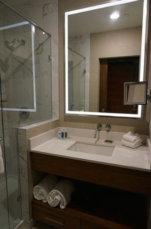 Radisson Hotel & Conference Centre Calgary Airport : Bathroom