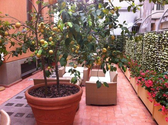 Hotel Palazzo Guardati: Sun Terrace