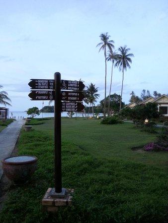 Nirwana Gardens Mayang Sari Beach Resort : Chalets on both direction