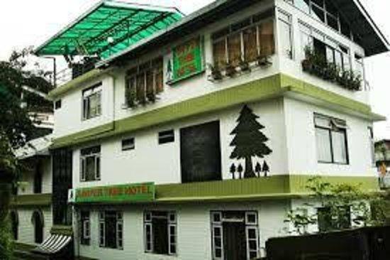 Juniper Tree Hotel: Hotel