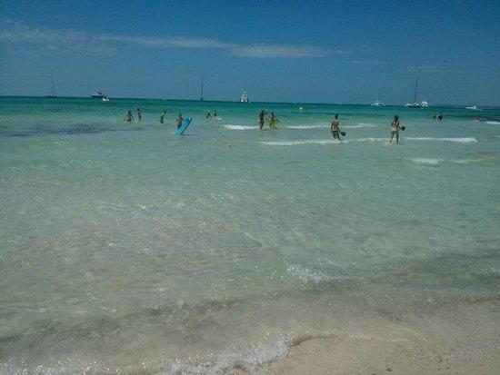 Playa de Es Trenc: Mare limpido ma con zone piene zeppe di alghe portate dalle correnti