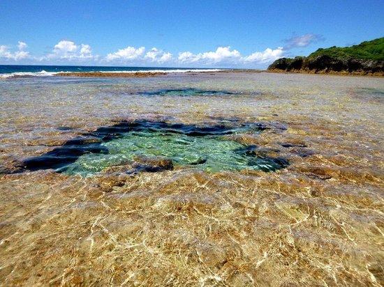 Niue: Namukulu Reef