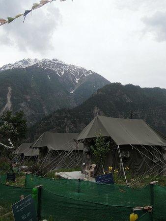 Igloo Nature Camp: Close to the nature