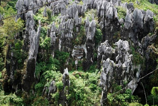 "Cercueil suspendus de Sagada : ""The Hanging Coffins"""
